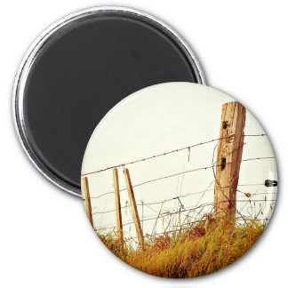 prickly filtered fence 6 cm round magnet