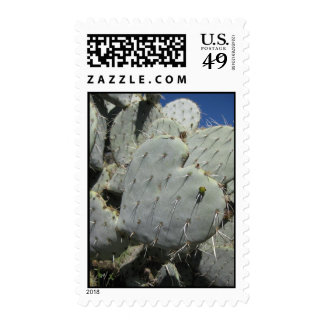 Prickly Hearts (1) Postage Stamps