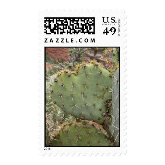 Prickly Hearts (3) Postage Stamps