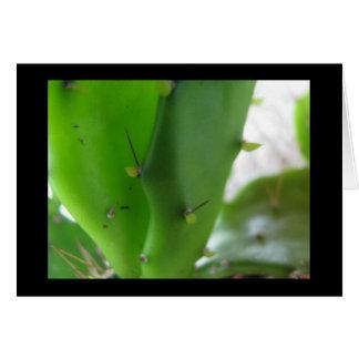 Prickly Pear1 Card