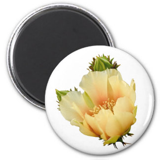 Prickly Pear Blossom 2 Inch Round Magnet