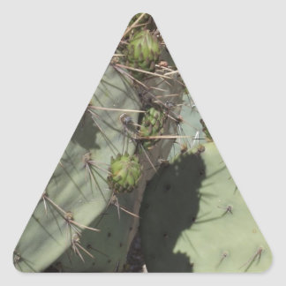 Prickly Pear Buds Triangle Sticker