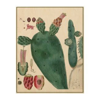 Prickly Pear Cactus Botanical Wood Wall Art
