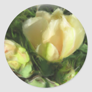 Prickly Pear Cactus Flower Round Stickers
