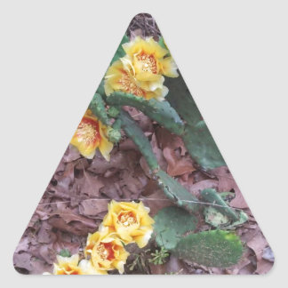 Prickly Pear Cactus Flowers Triangle Sticker
