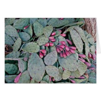 Prickly Pear Cactus & Fruit Card