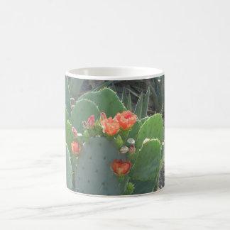 Prickly Pear Cactus Green Red Bloom Magic Mug