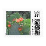 Prickly Pear Cactus Green Red Bloom Stamp
