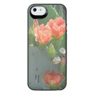 Prickly Pear Cactus Green Red Bloom Uncommon Power Gallery™ iPhone 5 Battery Case