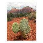 Prickly pear cactus in Sedona, Arizona - Postcard