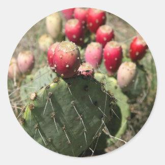 Prickly Pear Cactus In Texas Sticker