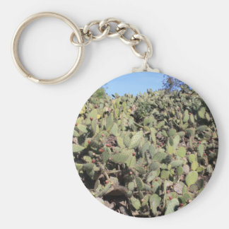 Prickly Pear Cactus Line Keychain