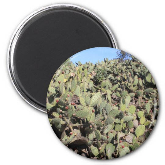 Prickly Pear Cactus Line Magnet