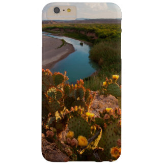 Prickly Pear Cactus (Opuntia Sp.) Barely There iPhone 6 Plus Case