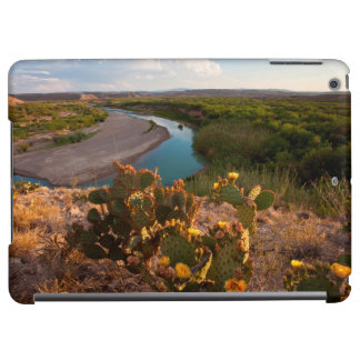 Prickly Pear Cactus (Opuntia Sp.) Cover For iPad Air