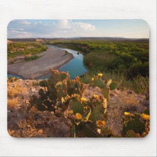 Prickly Pear Cactus (Opuntia Sp.) Mouse Pad