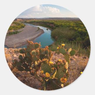 Prickly Pear Cactus Opuntia Sp Round Sticker