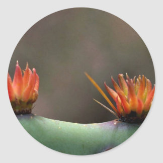Prickly Pear cactus Sticker