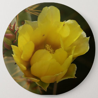 Prickly Pear Cactus Yellow Flower Button