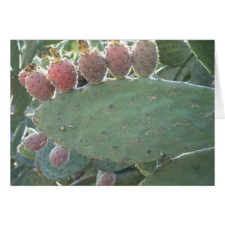 Prickly Pear fruit. Card