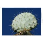 Prickly Pear Leaf Mexico Greeting Card