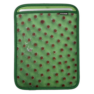 Prickly pear sleeve for iPads