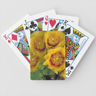 Prickly Pear Spring Bicycle Playing Cards