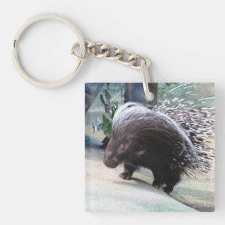 Prickly Porcupine Acrylic Keychain