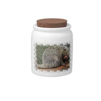Prickly Porcupine Candy Jar