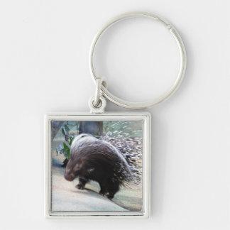 Prickly Porcupine Keychain