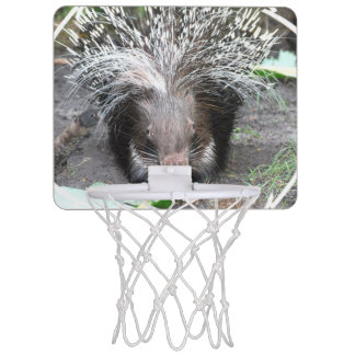 Prickly Porcupine Mini Basketball Hoops