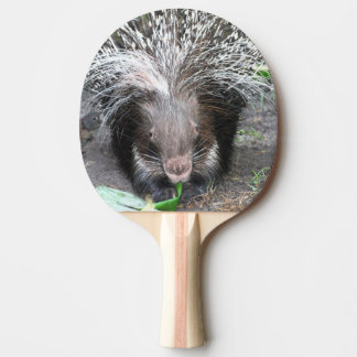 Prickly Porcupine Ping-Pong Paddle