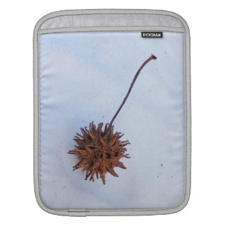 Prickly Seed ~ iPad Sleeve