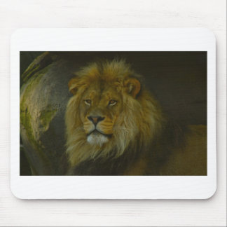 Pride Land Mouse Pad