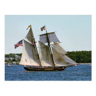 Pride of Baltimore II Tall Ship Postcard