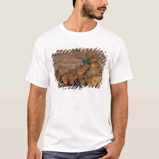 Pride of Lions Drinking T-Shirt