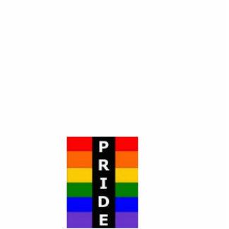 Pride Ordament Photo Cutout