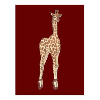 Prima Donna Giraffe Post Card