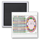 Primary/Adult Tooth Eruption Timetable Refrigerator Magnets