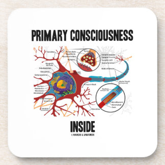 Primary Consciousness Inside (Neuron / Synapse) Coasters