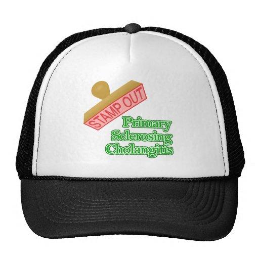 Primary Sclerosing Cholangitis Mesh Hats