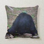 primate del animal que se sienta trasero almohadas