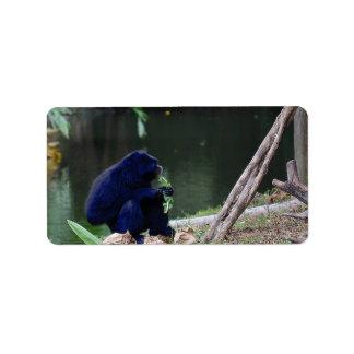 Primate eating greens on edge of land blue address label