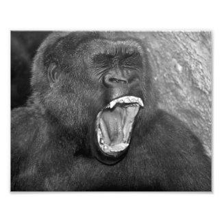 """Primate enojado """"Patrick """" Impresiones Fotograficas"""