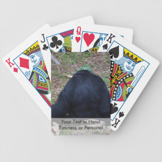primate from the back sitting animal bicycle playing cards