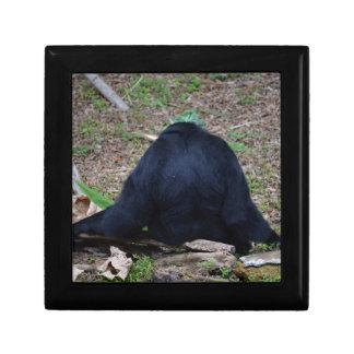 primate from the back sitting animal keepsake box