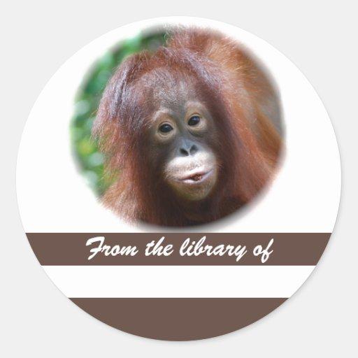 Primate Lover Book Sticker