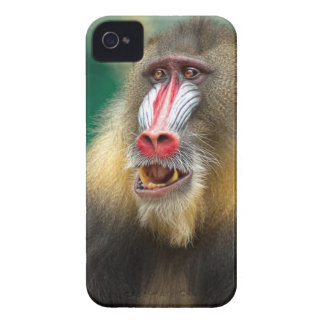 Primate Photography iPhone 4 Case-Mate Case