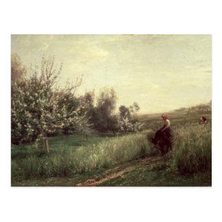 Primavera, 1857 postal