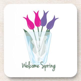 Primavera agradable posavaso